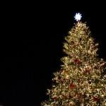 クリスマスツリーのオシャレな飾り付けおすすめツリー!