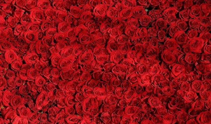 薔薇花束花言葉