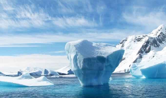南極クリルビタミン効果